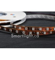 SMD5050 60LED/M High Density RGB LED Strip Light