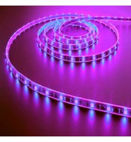 SMD5050 48LED/M Purple LED Strip Light